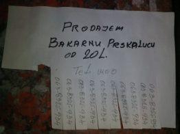 Dijana Trajković, 8-1, OŠ Branko Radičević, slika 3