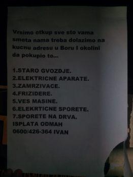 Milica Pavlović, 8-1, OŠ Branko Radičević, slika 1