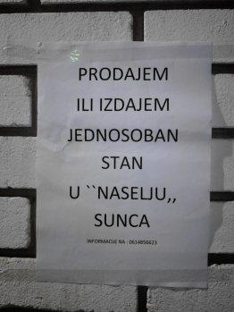 Stevan Andrić, 8-1, OŠ Branko Radičević, slika 1
